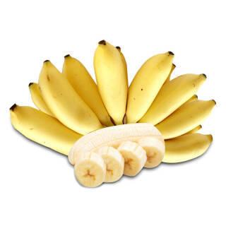 帆儿庄园 新鲜香蕉小米蕉 芭蕉 新鲜水果 2.5kg 16.92元