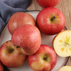 山西糖心红富士苹果 现摘10斤 17.8元包邮