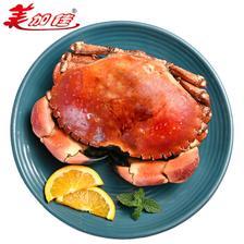 京东PLUS会员: AM 英国熟冻面包蟹 600-800g 89元,可优惠至44.5元