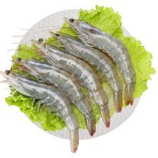 Seamix 禧美海产 厄瓜多尔白虾1kg/盒 30-40只 *3件 166.9元