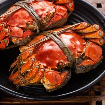 ¥78 大螃蟹特大鲜活 公4.2两母蟹3.2两8大定制礼品礼盒礼发7天内发货