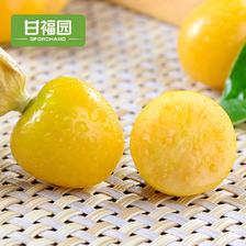 甘福园 东北姑娘果带箱5斤新鲜当季水果黄菇娘果灯笼果特产整包邮 29.8元