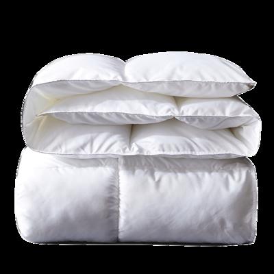全尺寸一个价 南极人被子冬被芯6斤 59元