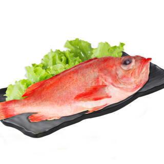 聚天鲜 冰岛进口冷冻深海红石斑鱼2条装 1.-1.4kg  券后44.5元