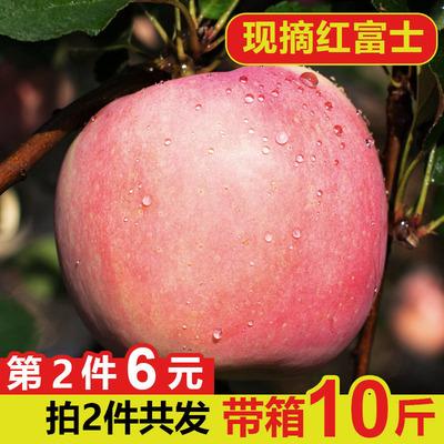 第二件6元 陕西红富士苹果5斤 券后12.8元
