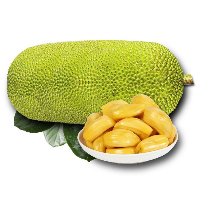 海南菠萝蜜黄肉大树木波罗蜜15-20斤 三亚新鲜应当季热带水果红40 43.8元