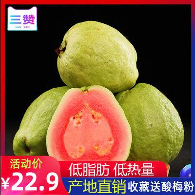 现摘现发! 三赞 台湾红心芭乐番石榴5斤 券后22.9元包邮