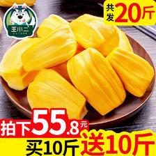 王小二 海南三亚黄肉菠萝蜜新鲜水果包邮 当季黄心波罗蜜假榴莲 55.8元