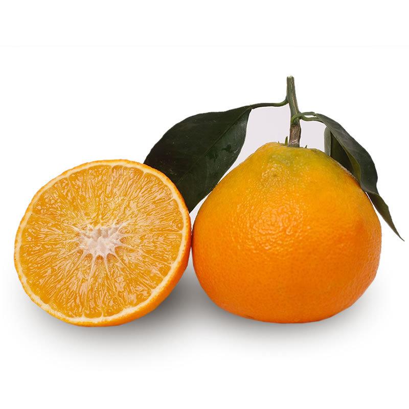 爱媛38号四川特产柑橘橙子胜赣南脐橙香甜多汁新鲜甜橙水果5斤装  券后14.8元