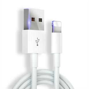 苹果系列 正品闪充数据线 ¥1