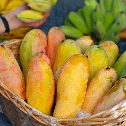 可食率90%、无筋! 5斤泰国 姚绿鲜 释迦摩尼芒果 拍5件共5斤券后29.8元包邮
