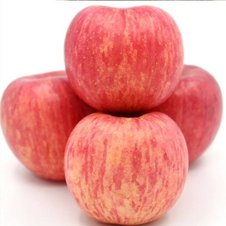 能量 现摘现发冰糖心红富士苹果 10斤 21.9元(需用券) ¥22