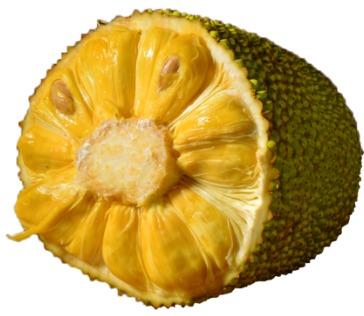¥79.9 六井 海南菠萝蜜现摘现发 12500g