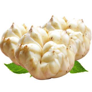 储山 2019年大别山新鲜食用百合 新鲜蔬菜生鲜霍山非宜兴百合 2斤装 28.8元
