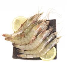大连野生大虾 对虾海鲜水产 基围虾明虾冰虾 青虾白虾海虾 4斤 (净重2.8-3.2
